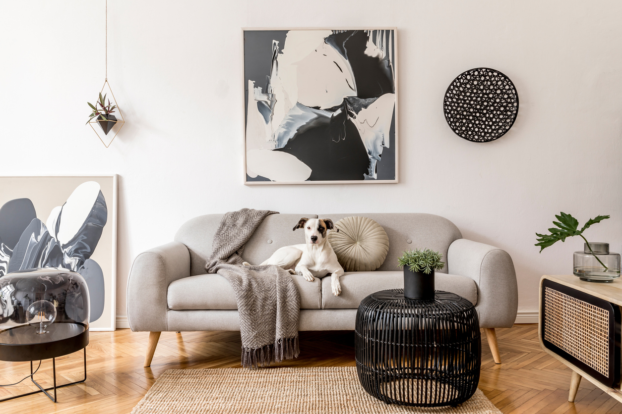 art hanging on the wall above a couch